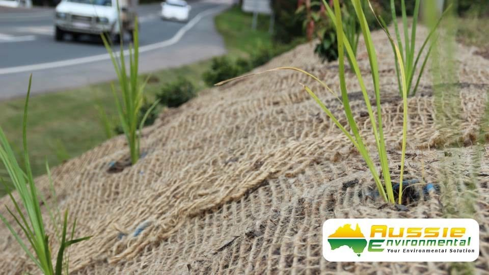 Jute Mesh with Planting for Revegetation