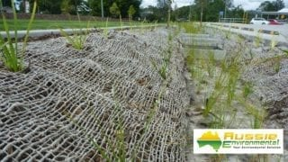 Jute Mesh Installation Covering Mulch for Erosion Control