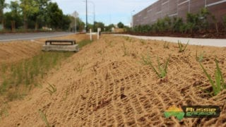 coir mesh, bank stabilisation