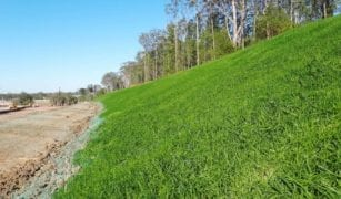 Hydroseeding Results from Aussie Environmental