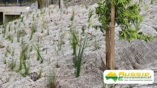 Jute Mesh / Netting with Plant growth for Erosion Control from Aussie Environmental