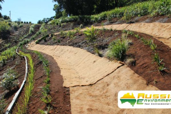 Coir Blanket Installation For Erosion Control With Revegetation From Aussie Environmental