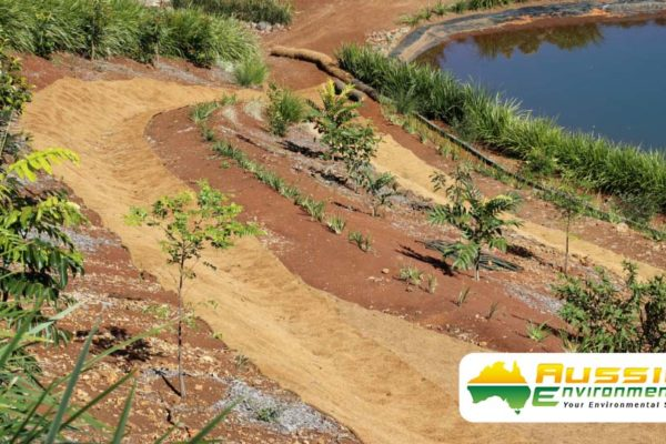 Garden Coir Blanket Installation For Erosion Control From Aussie Environmental