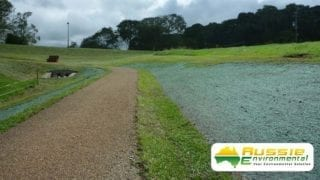 Hydromulch Grass Growth Maleny From Aussie Environmental