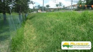 Hydroseeding Growth for Erosion Control Along Bank From Aussie Environmental