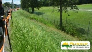 Hydromulching, Hydroseeding Growth After Two Months From Aussie Environmental