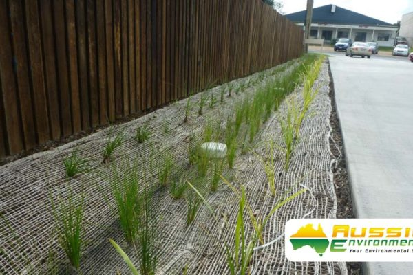 Jute Mesh Installed for swale drain along fence