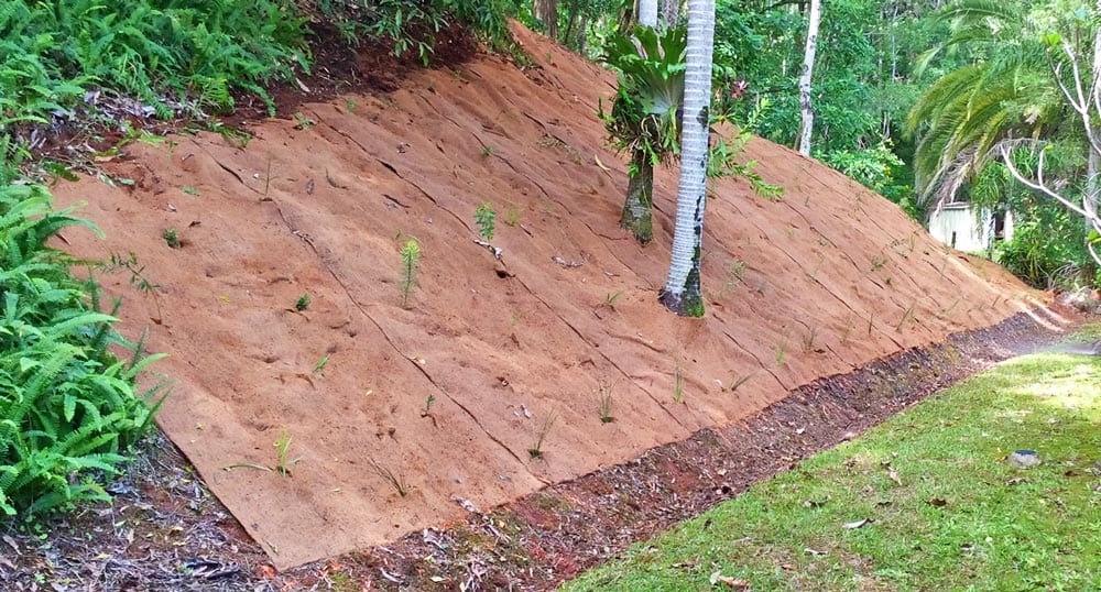 Coir Blanket Installation for Erosion Control