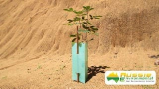Tree Guard Plant Protection