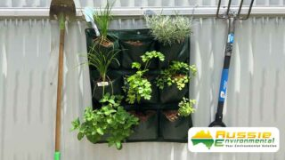 Wall Planter in situ